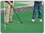 Click for more information on Emerald Dolphin Mini Golf.