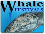 Click for more information on Whale Festivals.