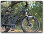 Click for more information on Rent an electric bike in Mendocino.