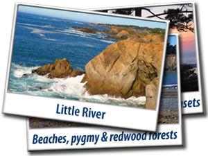 Postcards Little River